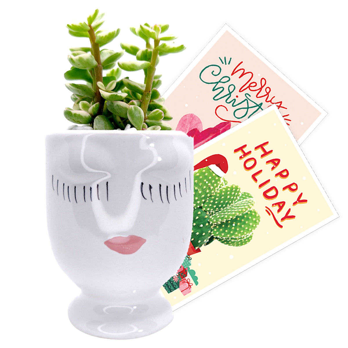 Holiday Pot Collection for sale, Claire pot for sale, unique pots for succulent and cactus, succulent pot decor, succulent pot gift ideas, Holiday decoration for sale, Designed Ceramic pot for succulent and cactus, small flower pot, Succulent pot decor ideas, succulent gift ideas