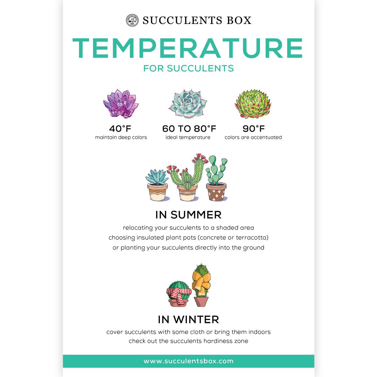 Temperature for Succulents card for sale, How to care for succulent plants, Succulent gift ideas