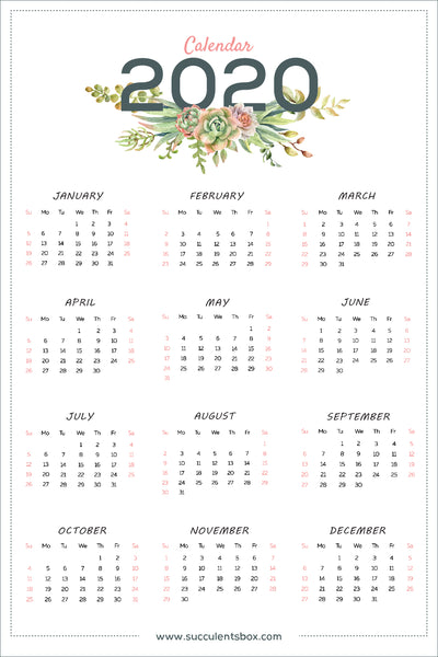 Cacti Calendar for sale, Succulents Calendar for sale, Small monthly calendar 2020 printable, Hanging cactus calendar, Succulent calender 2020, Cute office calendar, Succulents gift ideas