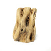 Cholla Wood for Air Plants Decor
