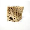 Cholla Wood Medium