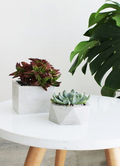 Small Pentagon Concrete Pot
