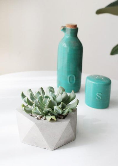 modern concrete pot