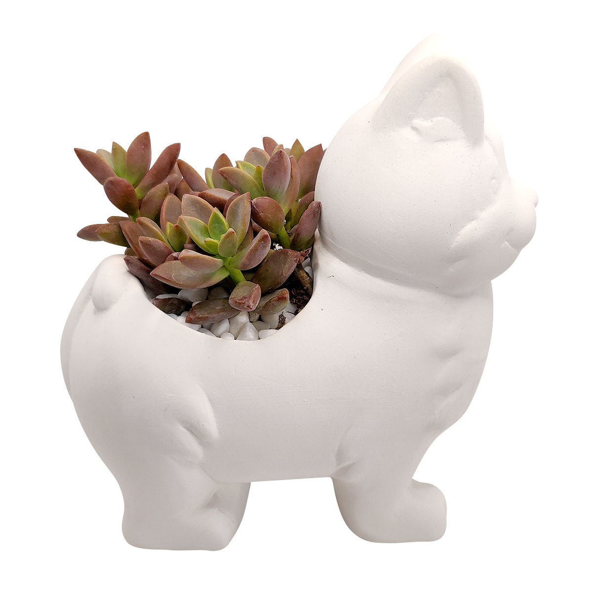 DIY Ceramic Kitty Pot for sale, White Ceramic Dog Planter Pot, Unique Succulent Gift, craft supplies, dog shaped planter pot, succulent pot plant pot DIY pot