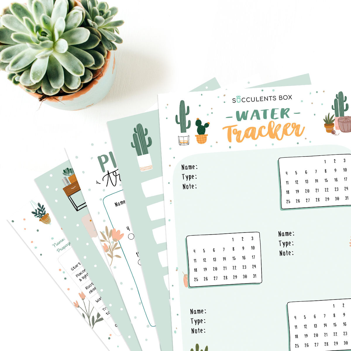 Printable Succulent Bullet Journal for free, Succulent gift for plant lovers, Printable for Journal or Planner, Succulent home office decor, Succulent printable template