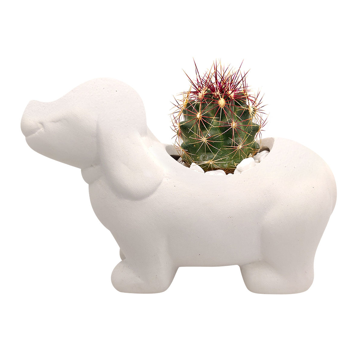 DIY Ceramic Puppy Pot for sale, Cute White Ceramic Succulent Pot, Little Dog Planter Decor, Craft Supplies, DIY Succulent Gift Ideas, Dog Shaped Succulent Pot