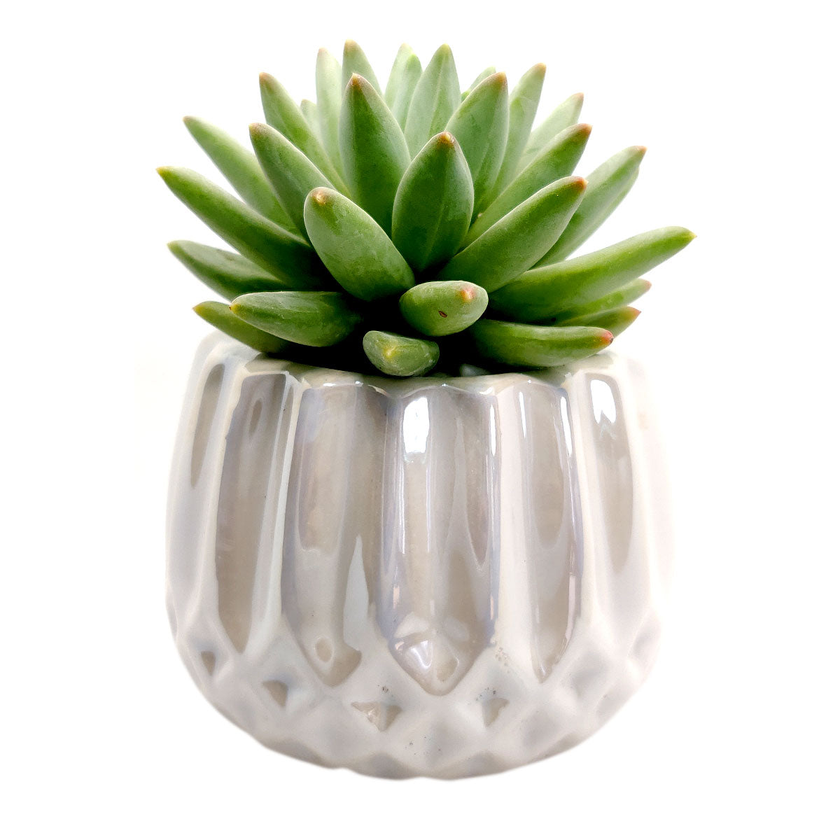 White Modern Geometric Pot