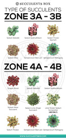 best succulent image, collection of Printable Succulents Art, digital printable succulent, choosing succulent for zone, Succulent designs Zone, Succulents Hardiness Zone, Printable Arts: Types of Succulent Zones for sale, Succulent Printable, succulent printable selection, succulent decor idea, succulent gift, succulent art