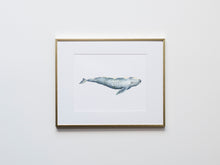 Load image into Gallery viewer, Gray Whale Watercolor Illustration Print