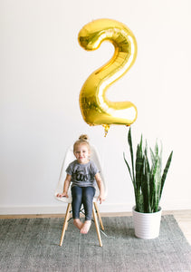 TWO Birthday Shirt Kids Tee