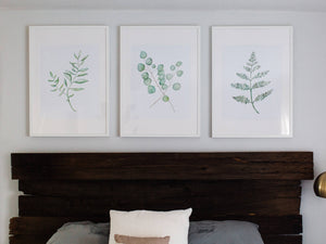 Watercolor Fern Botanical Plant Print