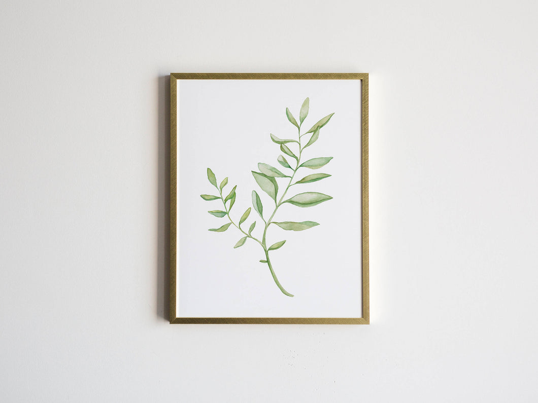 Watercolor Botanical Plant Print