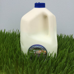 Williams Valley Family Farm A-2 Beta Casein Bred Grass-Fed Raw Milk Gallon