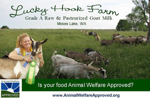 Lucky Hook Grass-fed Raw Goat Milk 1/2 Gallon