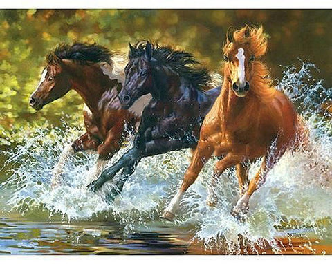 Three Galloping Horses Through Water - Easy DIY Paint by Numbers Kits - OwlCube Canvas Wall Art - OwlCube - Canvas Wall Art