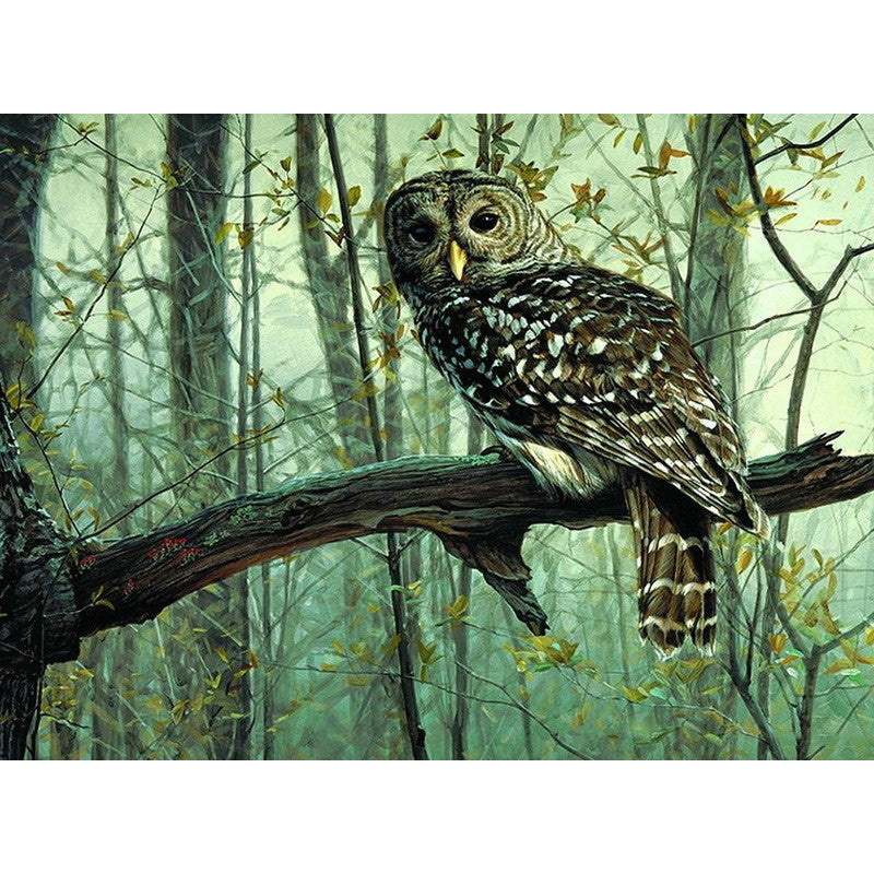 Owl on the Tree - Easy DIY Paint by Numbers Kits - OwlCube - Canvas Wall Art