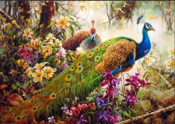 Peacocks Symbolize New Beginnings and Eternal Life - Easy DIY Paint by Numbers Kits - OwlCube Canvas Wall Art - OwlCube - Canvas Wall Art