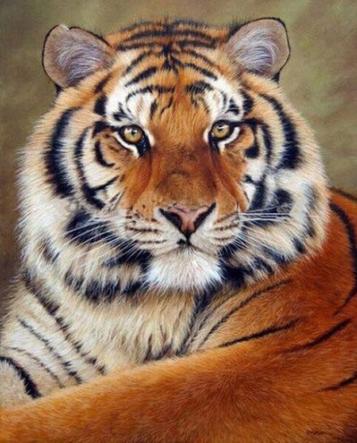Keep Your Eyes on Your Goals with Power Tiger - Easy Diamond Painting Kit