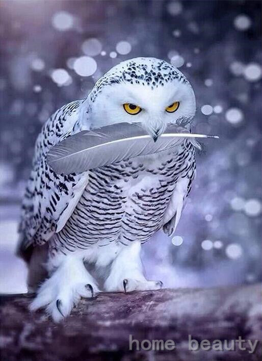 Snow Owl - Easy DIY Diamond Painting Kits - OwlCube - Canvas Wall Art