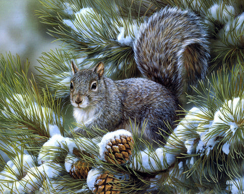 Squirrels Eat Fruit Snow - Easy DIY Diamond Painting Kits - OwlCube - Canvas Wall Art
