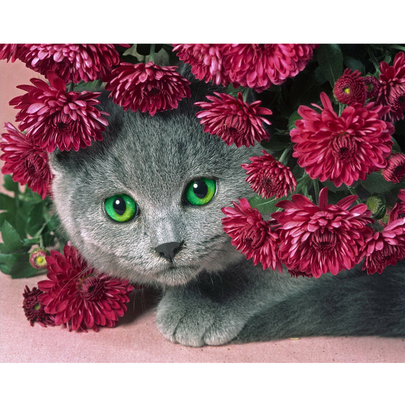 Flowers Cat - Easy DIY Diamond Painting Kits - OwlCube - Diamond Painting by Numbers