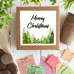 Eco friendly christmas gift ideas Australia. Seed kit merry Christmas. Recycled card, party event favours growing plants.
