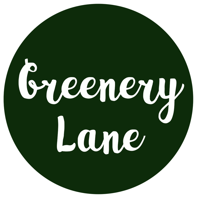 Greenery Lane plastic free seeds pocket garden grow kit seed plant add water eco bee friendly brisbane australia