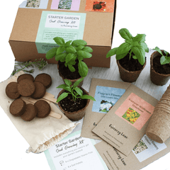 Greenery Lane starter garden Seed growing kit Australia, eco friendly gift idea. Grow pack for plants for your garden plot. Australian wildflower and herbs.