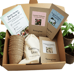 Seed growing kit Australia, eco friendly gift idea. Grow pack for plants for your garden plot. Australian wildflower and herbs.
