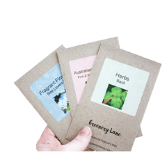Eco friendly Christmas gift idea for gardeners. Fun colourful seeds. Grow plants seed kits for plot Facebook group. Garden herbs flowers wildflowers