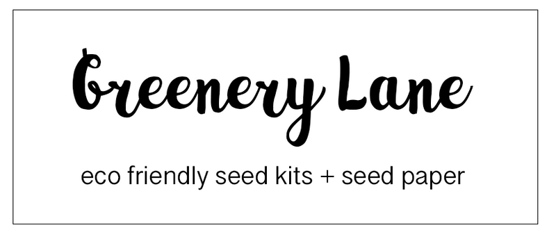 Greenery Lane seed kits teacher eco friendly ideas brisbane sydney melbourne australia grow plants