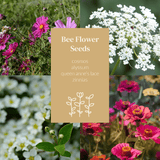 Seeds Australia for growing your plot garden harvest. Wildflowers native greenery lane