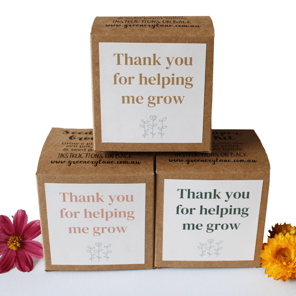 Greenery Lane Teachers Gifts - Seed Paper Grow Kits Teachers Gifts - Seed Paper Grow Kits Australia eco friendly ideas