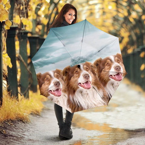 Lovely Australian Shepherd Print Umbrellas
