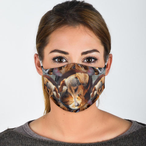 Dachshund Collage Print Face Mask