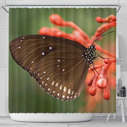 Butterfly Print Shower Curtains-Free Shipping