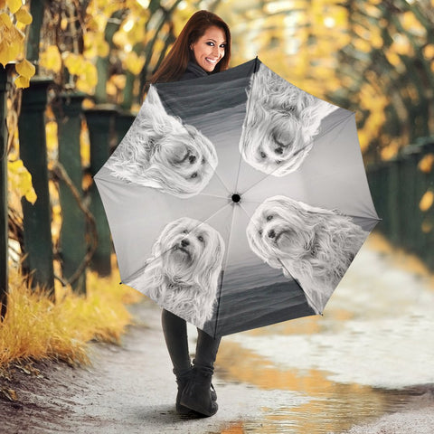 Lovely Havanese Dog Print Umbrellas