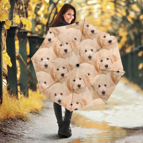 Golden Retriever Puppies Print Umbrellas