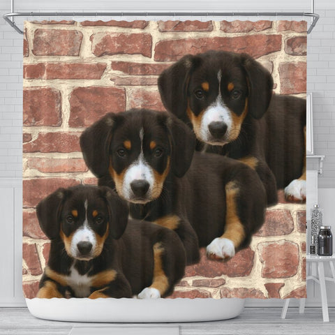 Cute Entlebucher Mountain Dog Print Shower Curtains-Free Shipping