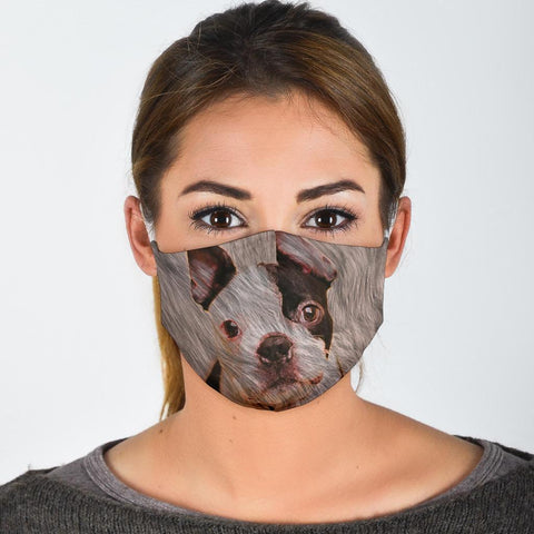 Boston Terrier Print Face Mask-Limited Edition