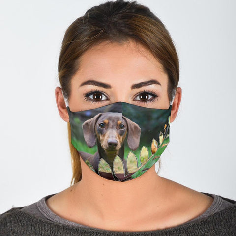 Dachshund Dog Print Face Mask