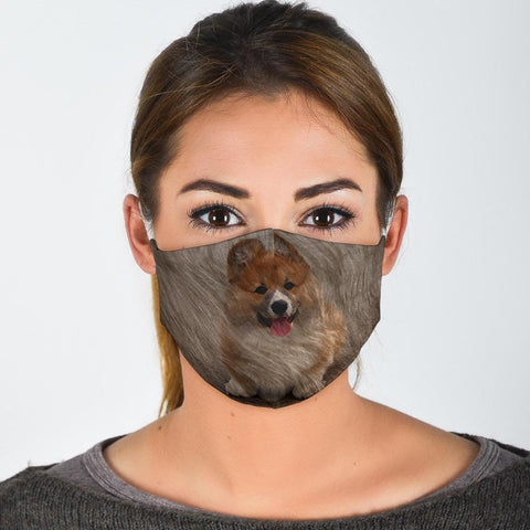 Pembroke Welsh Corgi Print Face Mask