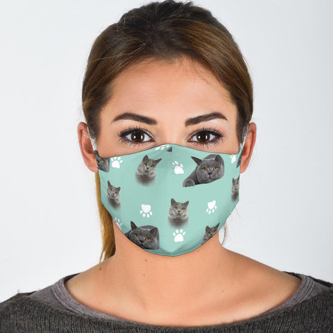 British Shorthair Cat Patterns Print Face Mask