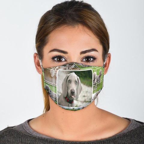 Weimaraner Dog Print Face Mask