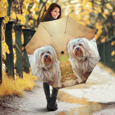 Havanese Dog Art Print Umbrellas