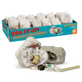 Dig it Up! Dinosaur Eggs, Big Bugs and Minerals Set of 3