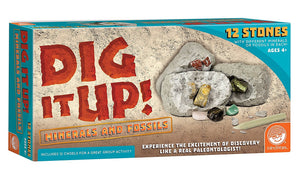 Dig It Up! Fossils & Minerals