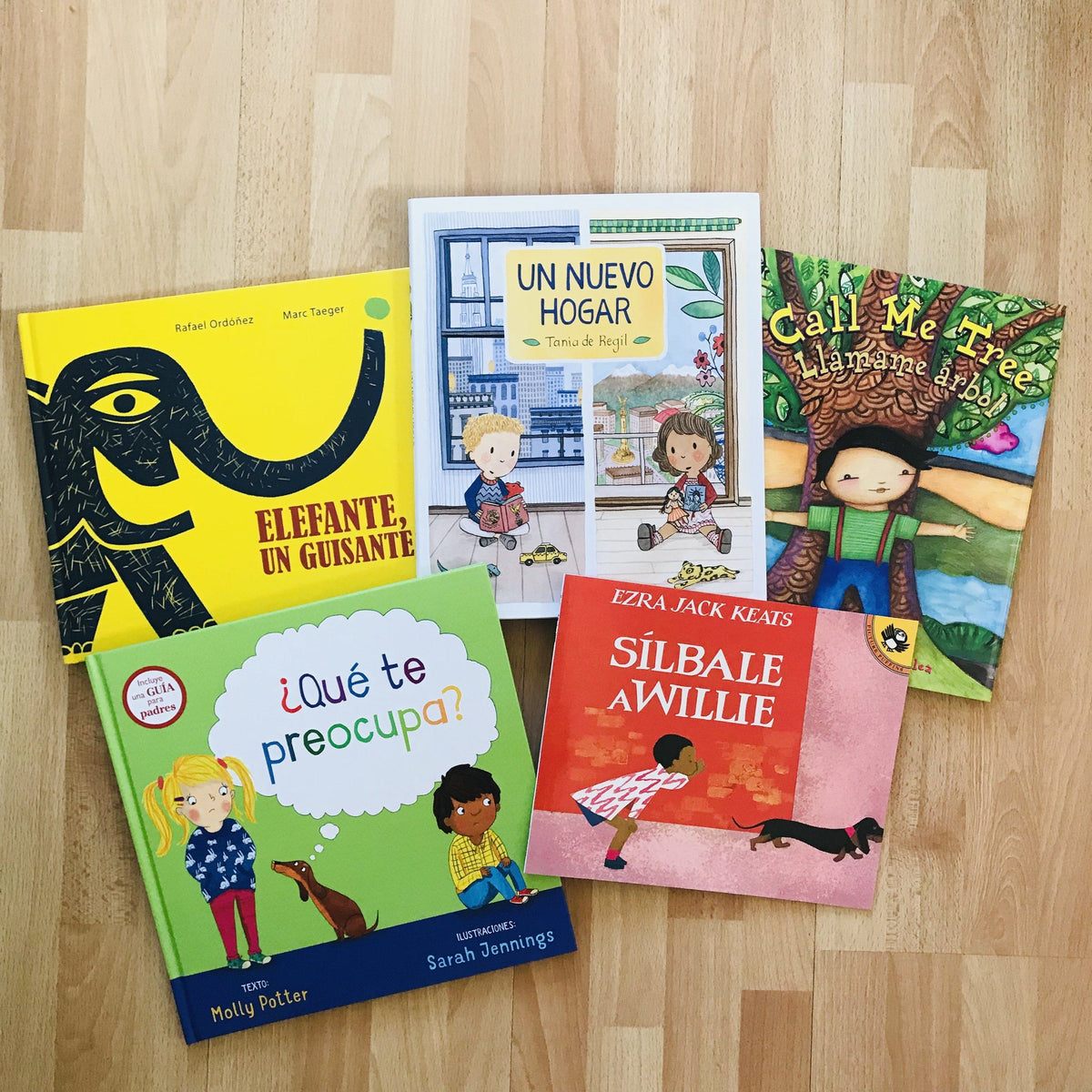 Daycare and Preschool Book Box for Libraries and Classrooms-Booklandia-bilingual-spanish-childrens-books