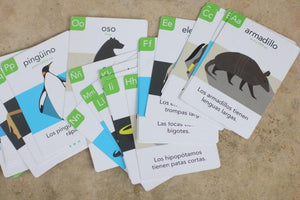 Mama Lingua's Bilingual Flash Cards