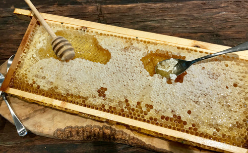 Bees & Co. - Raw British Whole Honeycomb Frame